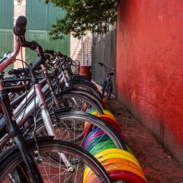 """""""The students in Design+Society got to rent bikes for the day and explore the city by bike. Our group wondered out to the Red Square and explored the Bike Highway."""" -Ryan Wakat"""