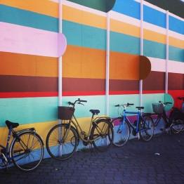 """Biking through life."" - Paola Diez"