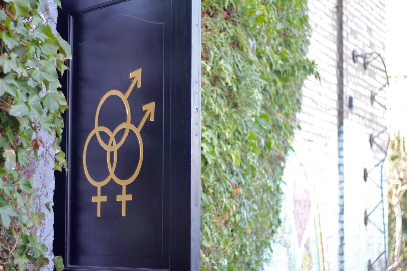 Adrienne Szamotula spr13 - gender, door, christiania