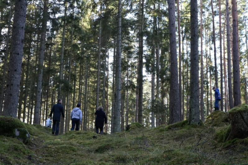 FA15_HomestayExperience_SwedishForest_HyltaSweden_12_KatGowland