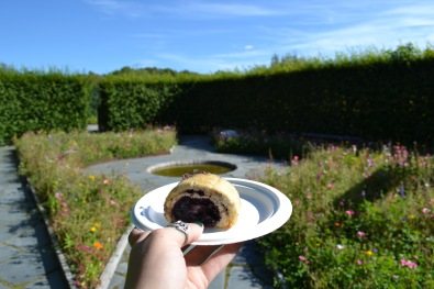food in the air! blueberry cake from the cafe in one of the gardens