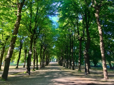 humlegarden park in the city