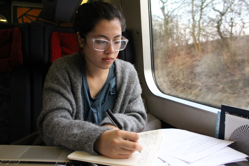 Spring2016_Train to Aarhus_Studying on a train_EmilyVolpert(10).jpg